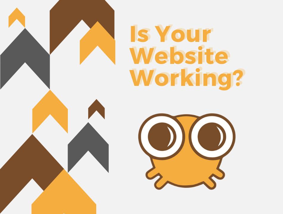 web designers bucks